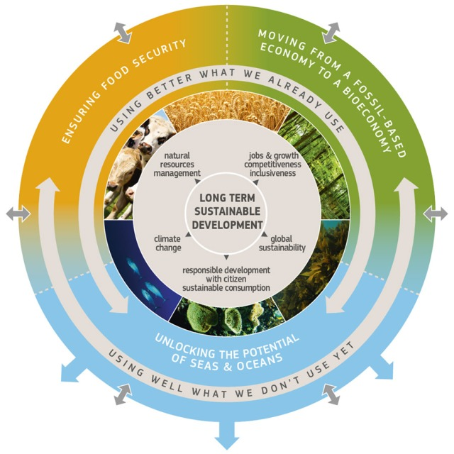 bioeconomy_graphic_full.jpg
